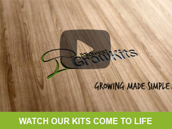 Watch our kits come to life