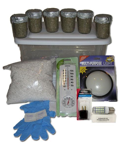 Simple Mushroom Grow kit