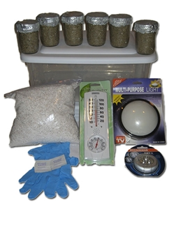 Simple Mushroom Grow Kit