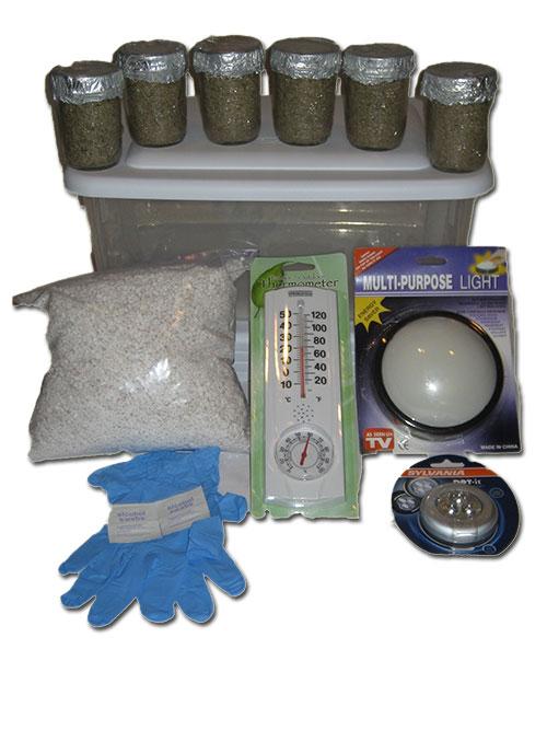 Simple Mushroom Grow Kit  sc 1 st  Midwest Grow Kits & Mushroom Growing Kits