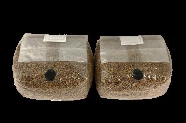 Premium Spawn Bags