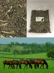 Premium Manure-Based Bulk Casing Mix - 2.5 lbs manure, casing, substrate